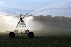 Irrigação da colheita imagens de stock royalty free