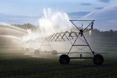 Irrigação das colheitas fotografia de stock royalty free
