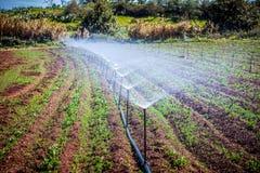 Irrigación Imagen de archivo libre de regalías