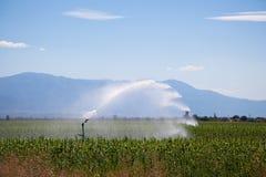 Irrigación Fotos de archivo libres de regalías