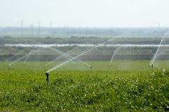 Irrigación Foto de archivo