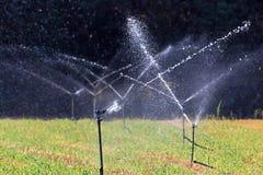 Irrigación agrícola del campo Imagen de archivo