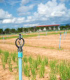 Irrigación de regadera para el campo de la agricultura en país en vías de desarrollo fotos de archivo