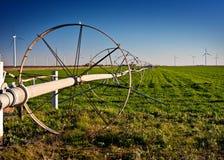 Irrigación del agua en un campo verde rural Foto de archivo