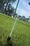 Irrigación del césped Fotografía de archivo