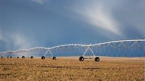 Irrigación del círculo de la cosecha Imagen de archivo libre de regalías