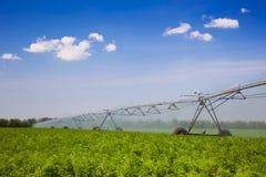 Irrigación en campo/agricultura Foto de archivo
