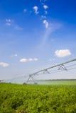 Irrigación en campo/agricultura Imágenes de archivo libres de regalías