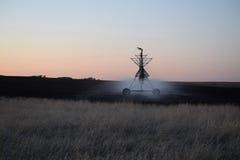Irrigación en campo en la salida del sol Fotos de archivo libres de regalías
