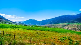 Irrigated fertile farmland along the Fraser River as it flows through the canyon to the town of Lillooet in the Chilcotin region. On British Columbia, Canada stock photos