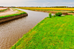 Irrigatie royalty-vrije stock afbeelding