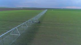 Irrigatiemateriaal voor het groene raapzaad water geven op landbouwgebied, hommelmening op platteland stock footage