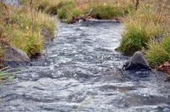 Irrigatiesloot die bij hoogtepunt lopen royalty-vrije stock fotografie