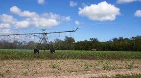 Irrigatiesproeier Australië royalty-vrije stock fotografie