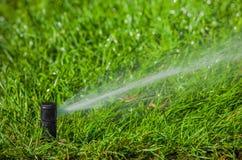Irrigatiesysteem die het gazon water geven Stock Foto