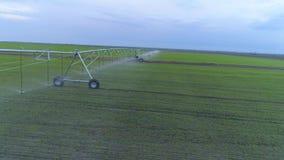 Irrigatiesysteem het water geven van landbouwgrond, satellietbeeld op groen raapzaadgebied en hemel stock footage
