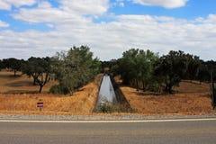Irrigatiesysteem in Portugal Royalty-vrije Stock Afbeelding