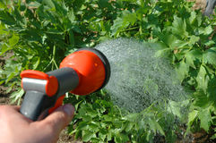 Irrigating Stock Photos