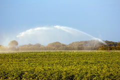 Irrigating crops Royalty Free Stock Photo