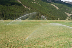 Irrigating field on summer Royalty Free Stock Image