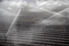 Free Irrigating Fields Stock Images - 11110824