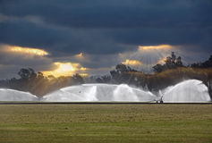 Irrigating A Green Grass Polo Field, Irrigation Stock Photo