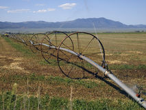 Irrigating a Hay Field Royalty Free Stock Image