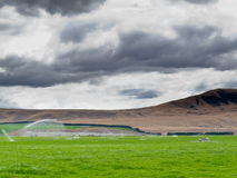 Irrigating lush farm pastures in central Otago NZ Stock Images