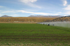 Irrigating Pastures Stock Photography