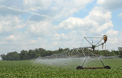 Irrigating a Soybean Field Stock Image