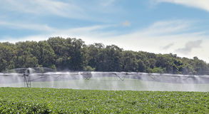 Irrigating Soybean Field Royalty Free Stock Images