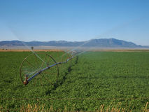 Irrigation Royalty Free Stock Photos