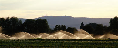 irrigation Photographie stock