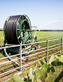 Irrigation Stock Photo