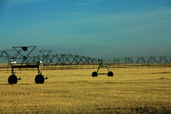 Irrigation. Pipes in a farmers field Royalty Free Stock Photography