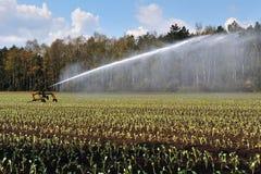 Irrigation photographie stock