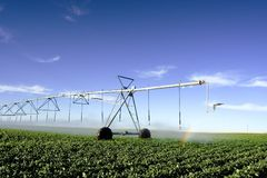 Irrigation Stock Image