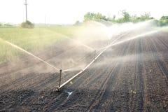 Irrigation image stock