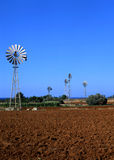 Irrigation. Windmills pumping water for farmland in Cyprus stock photo