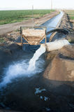 Irrigation. Water flowing from a pipe into an irrigation canal Stock Image