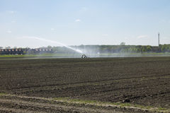Irrigation of agricultural crops Royalty Free Stock Photo