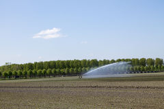 Irrigation of agricultural crops Stock Photos