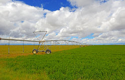 Irrigation in American Farmland Stock Photos