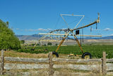 Irrigation automated sprinkler for watering crops Royalty Free Stock Images