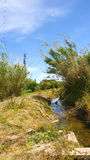 Irrigation canal in the Delta del Llobregat Royalty Free Stock Images