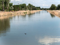Irrigation canal, Fallon, Nevada Royalty Free Stock Image