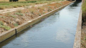 Irrigation canal in the field stock video footage