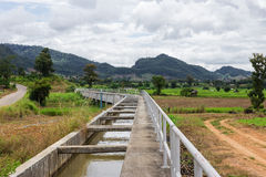Irrigation canal. In the field Stock Image
