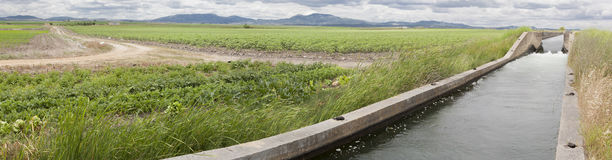 Irrigation canal flows over the fertile meadows of High Guadiana Stock Image
