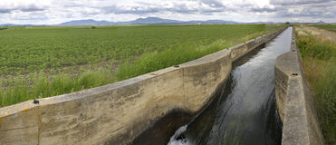 Irrigation canal flows over the fertile meadows of High Guadiana Royalty Free Stock Images